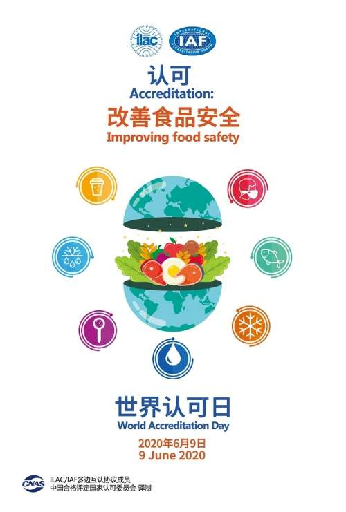 6月9日世界认可日国际版宣传海报